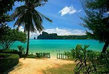 - Travel Tips & Destinations -
