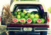 Summer time love----Good old watermelon ;) / by Polly Davis Arens
