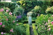 Yard Escapes / Ideas for planting annuals and perennials around your home