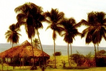TRAVEL DESTINATIONS IN HAITI / The places in Haiti that you don't normally see.