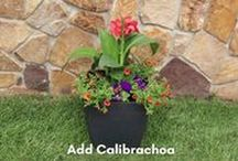 DIY Garden Projects / Inspiration for easy, DIY garden projects #GrowWithUs #DIY