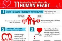 Your Healthy Heart / Your heart is pumping, so it's time for YOU to get pumped along with it!   / by Puritan's Pride