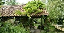 SC | Tuintrends Karwei / Op dit bord zijn 4 tuintrends uitgewerkt voor Karwei 2017. De duurzame, natuurlijke, wereldse, en binnentuin.