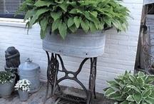 Garden Ideas / by Billie Fredell