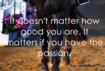 The Equestrian life / by Cassidy Gatlin