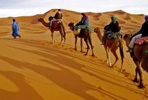 Faire un voyage / places i wanna go