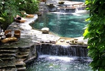 Cool Pools! / by Kathy Henderson