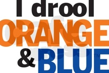 *blue/orange* / My son's football teams colors are orange and blue. Everything that is orange and blue or related to football. / by Cheri Rollo