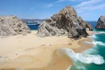 let's go to Cabo / ~ our home away from home ~