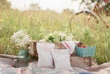 {pretty pictures} / by Megan Brooke Handmade