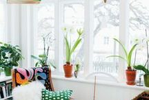 haus / home decor, garden, design objects, organization, and more!