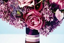 Purple Wedding / Plum / Violet. Color Theme Wedding. / Finds and Ideas by Nia Person / by Nia Person Bridal