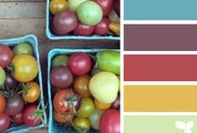 Color Pallets  / by Beth Betts Mallory