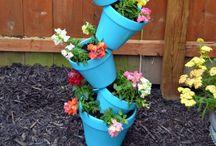 INSPO- Gardening / Gardening tips, tricks & ideas!