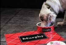 Personalized Pet Gifts / We love our pets and spoil them whit monogrammed items. Personalize Fido's collar or bowl!