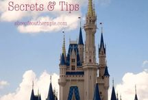 TIPS- Disney World / The best place on earth