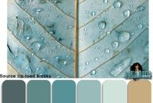 Colour Inspiration.  / by Barbara Tharp