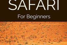 On Safari / All the best Safari Travel from around the world including Safari Travel Inspiration, Safari Packing Lists, Safari Itineraries, Safari Accommodation and more.