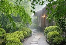 KYOTO - Japan / Most wonderful area to visit. Here l have saved lot's of great places to visit.