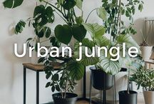 Urban Jungle | made.com / Whether you're bringing the outdoor in or taking yourself into the garden for summer, we've got a little somethin' somethin' for everyone. Find wooden and rattan chairs, tables lounge sets and sofas to extend your style outside. Now for a long drink.