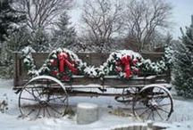 I'm Dreaming Of A White Christmas. . . / by Jeanne Smith