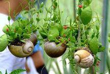 """""""Jardinage et Nature"""" avec les enfants"""