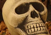 Halloween - Esqueletos