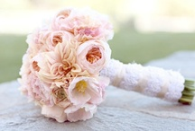 Blissful Bouquets / by 1 Elegant Event Wedding & Event Planning