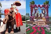 Devine Cultural Weddings