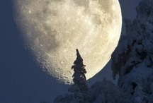 Moon Shine..... / By the light of the silvery moon.....