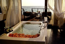 Luxury Powder Rooms / Plush bathrooms to relax in and admire!