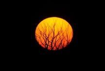 Nap - Hold ( Sun - Moon )