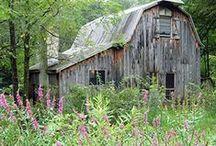 Barns <3 / by ShabbyPinkGirl