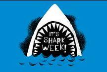 Let the Fin Begin: Shark Week / Celebrating the 25th Anni of SHARK WEEK!