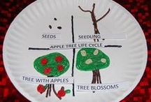 Apples Theme for Preschool and Kindergarten / Playful Learning Activities for an APPLES THEME in Preschool and Kindergarten
