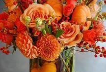 Color Story: Orange You Glad..