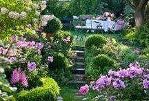 My Cottage Garden / by ShabbyPinkGirl