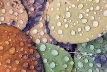 Match colors  / by Selli Coradazzi