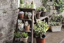 Salvaged Materials in Gardens / Salvaged materials integrated into beautiful gardens
