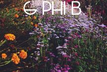 Gamma Phi Beta ❤️ / by Alex Veale