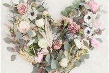 Florals / Florals, blooms, gardening, flowers