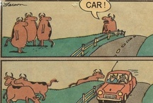 Humor & Funny