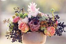 Garden Wedding Mood Board