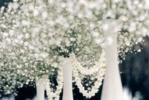 Wedded.Bliss. / by Sarah Elaine King