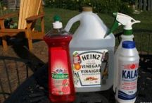 Bug Sprays/pesticides/weed killers / by Candace Bradley