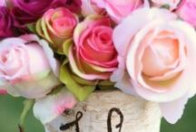 Pretty in Pink / by Julie Molenda
