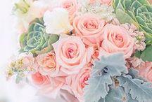 Dream Wedding / Davids Bridal Contest. / by Brenda Steffan