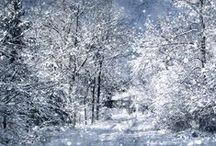 Winter Wonderland..&..Christmas / by PB