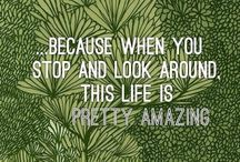 words + quotes. / by Brandi Lynn