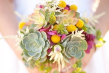 succulents / Succulent plant wedding bouquets and favor inspiration / by Jennifer White Photography
